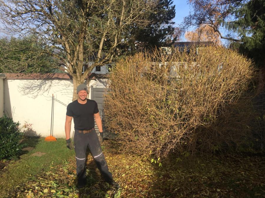 Gartenpflege München bringt freude in den garten gartenpflege mörtl